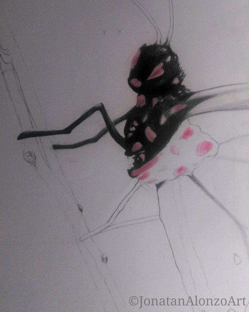 Preview__2___Butterfly_by_Jonatan_Alonzo_Art_260829.jpg