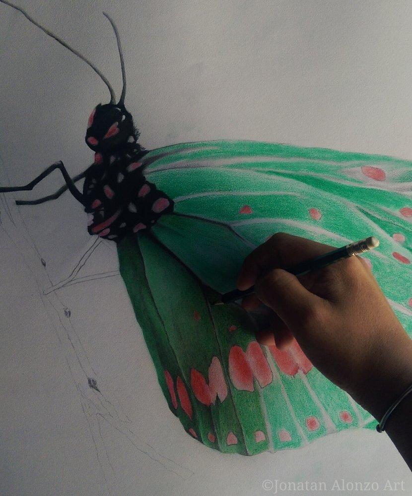 Preview_4___Butterfly_by_Jonatan_Alonzo_Art_262569.jpg