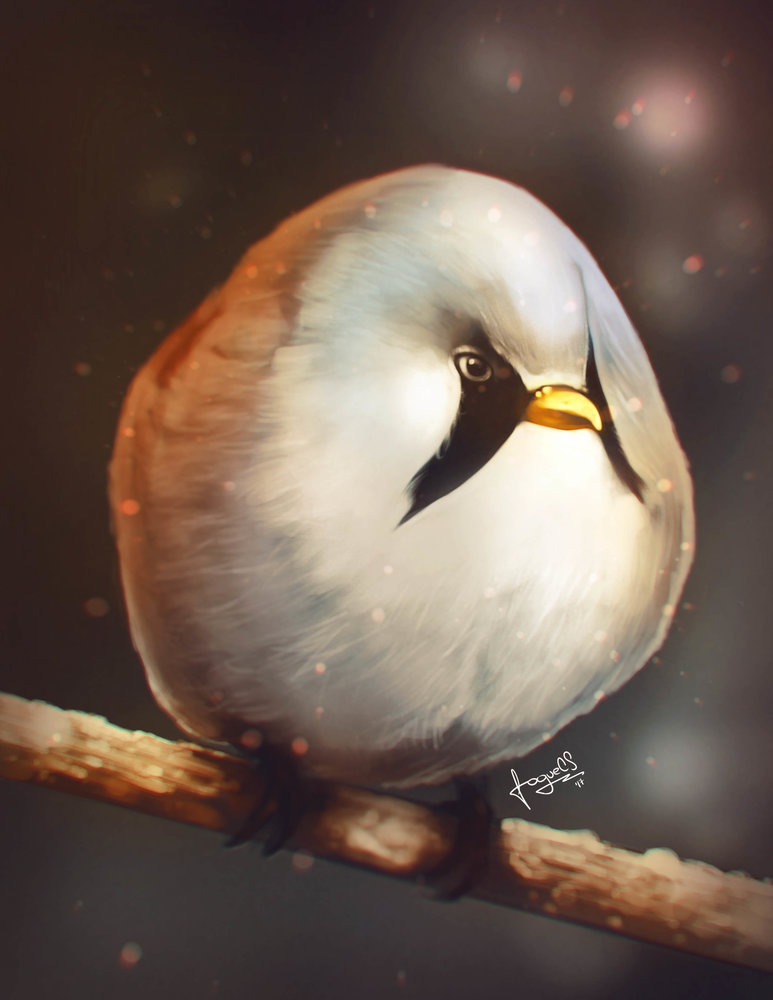 BirdBall1_314489.jpg