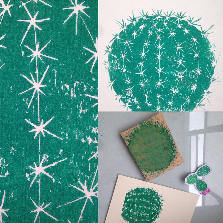 cactus_gordito_319691.JPG