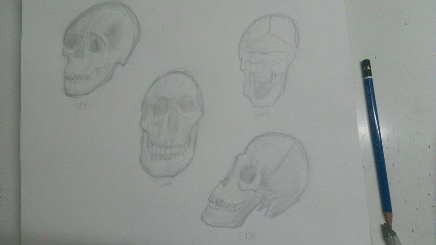 AnatomYua_crYaneo__327651.jpg