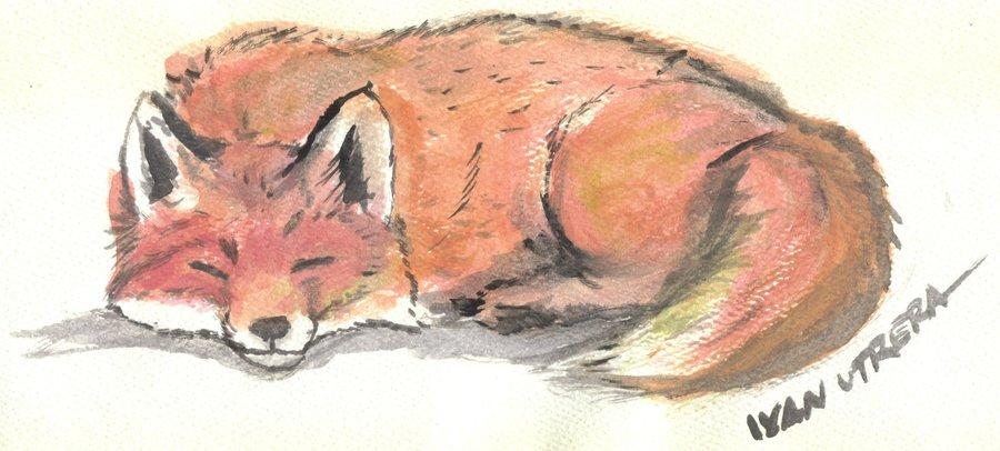 fox06_328303.jpg