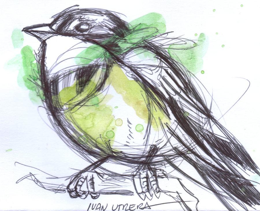 bird04_329961.jpg