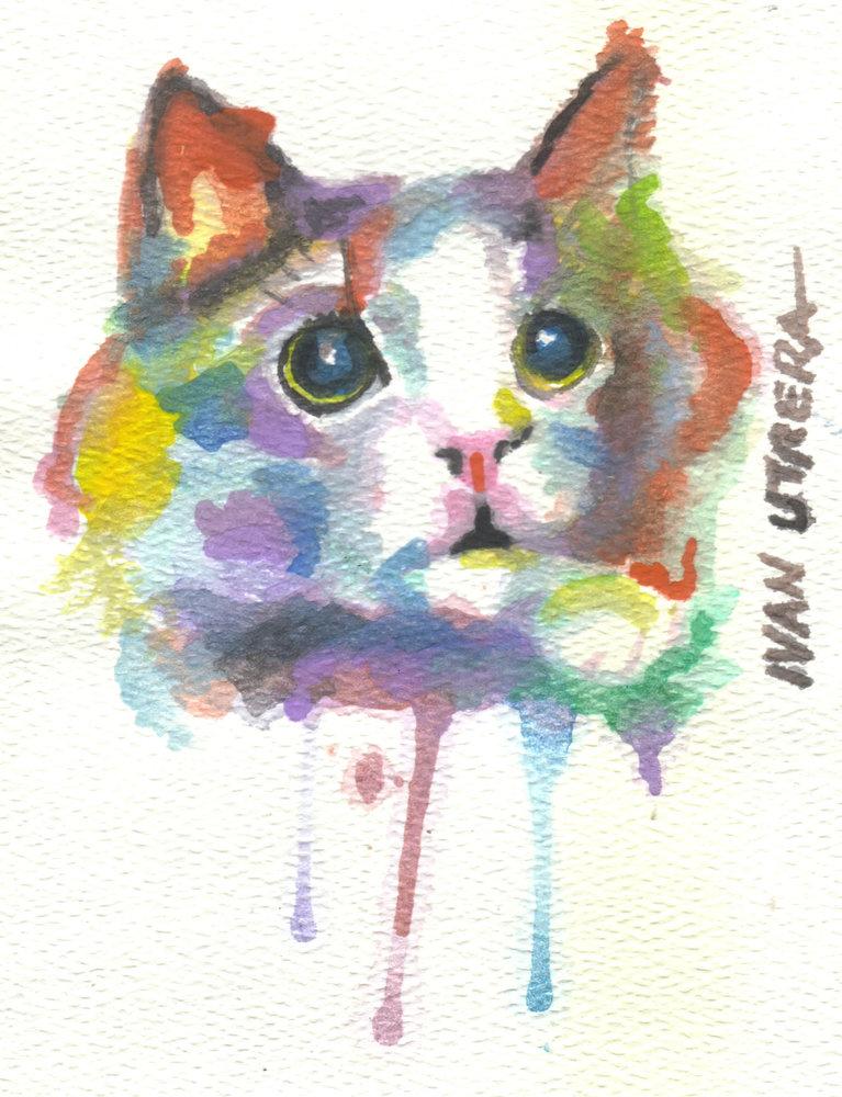 cat02_331451.jpg