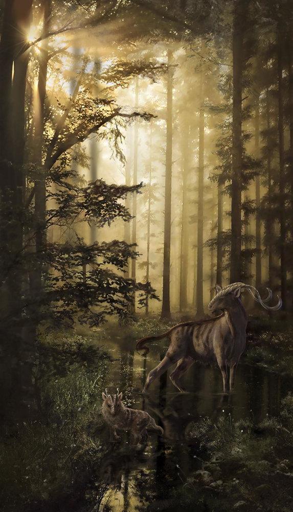 bosque1_331960.jpg
