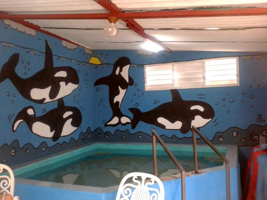 mural_orcas_337566.jpg