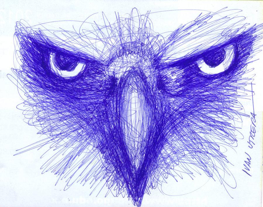 eagle02_339195.jpg
