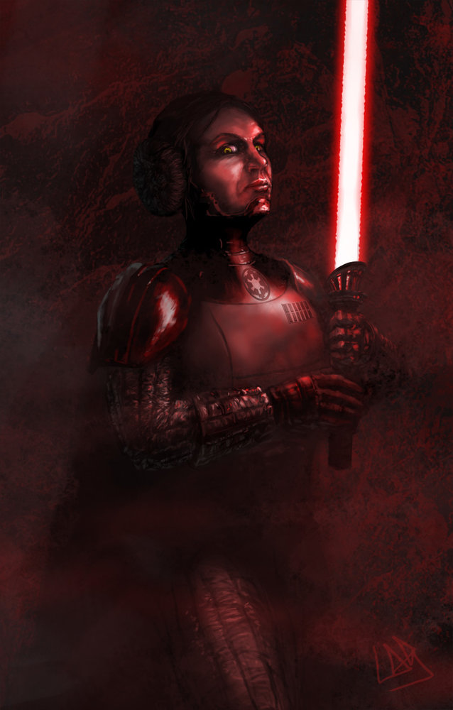 02_darth_leia__07_lr_339780.jpg