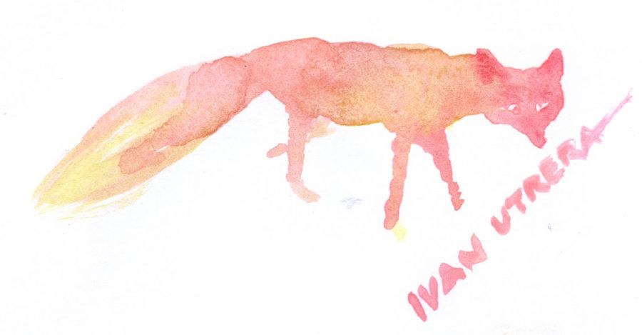 fox01_340138.jpg