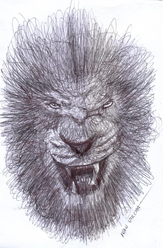 lion09_340141.jpg