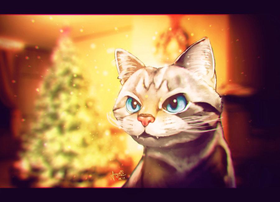 Angry_Cat3_341633.jpg