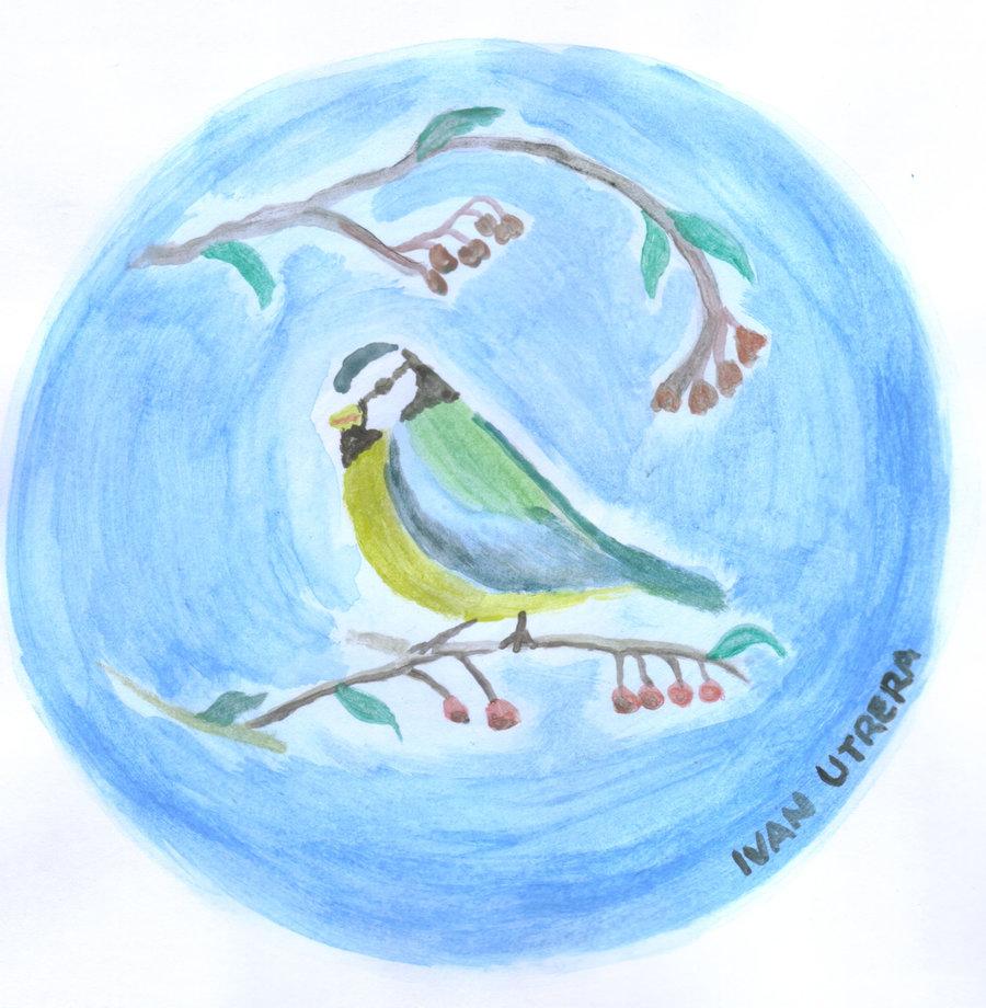 bird1_306962.jpg