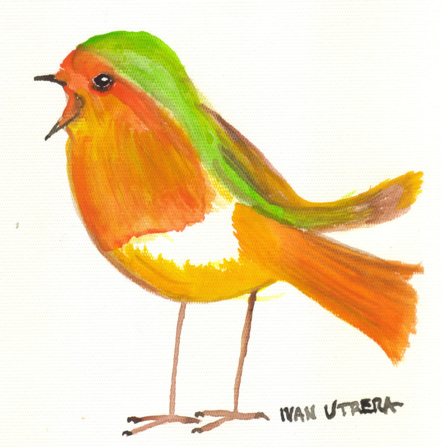 bird00_307225.jpg