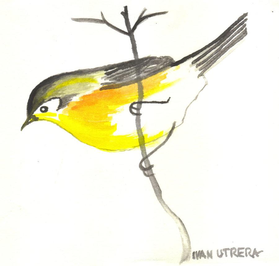 bird01_307304.jpg