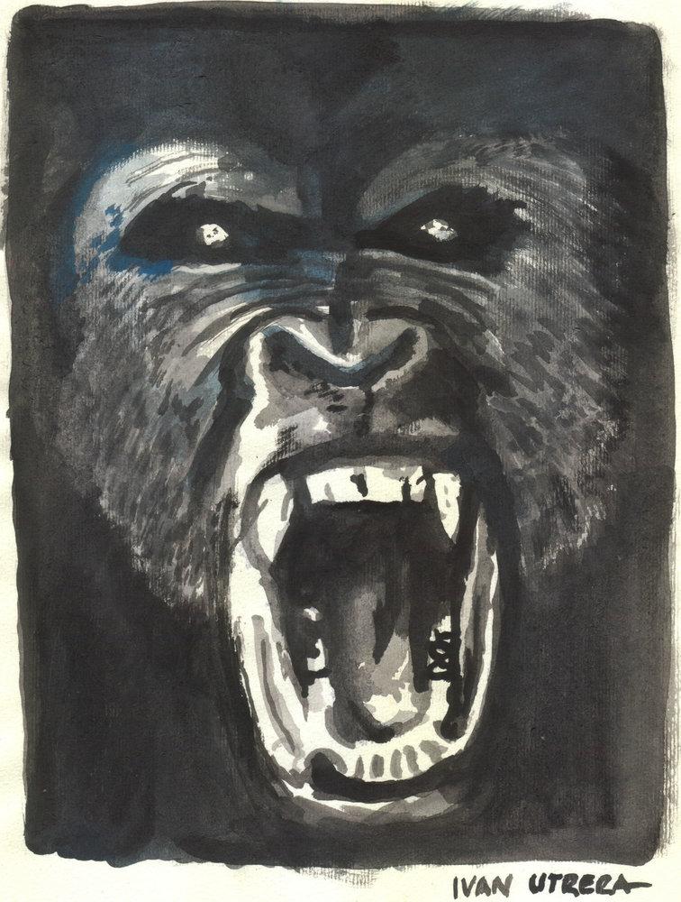 gorila0_308958.jpg