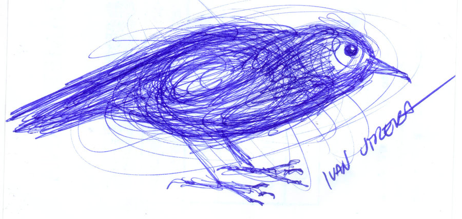 bird21_310814.jpg