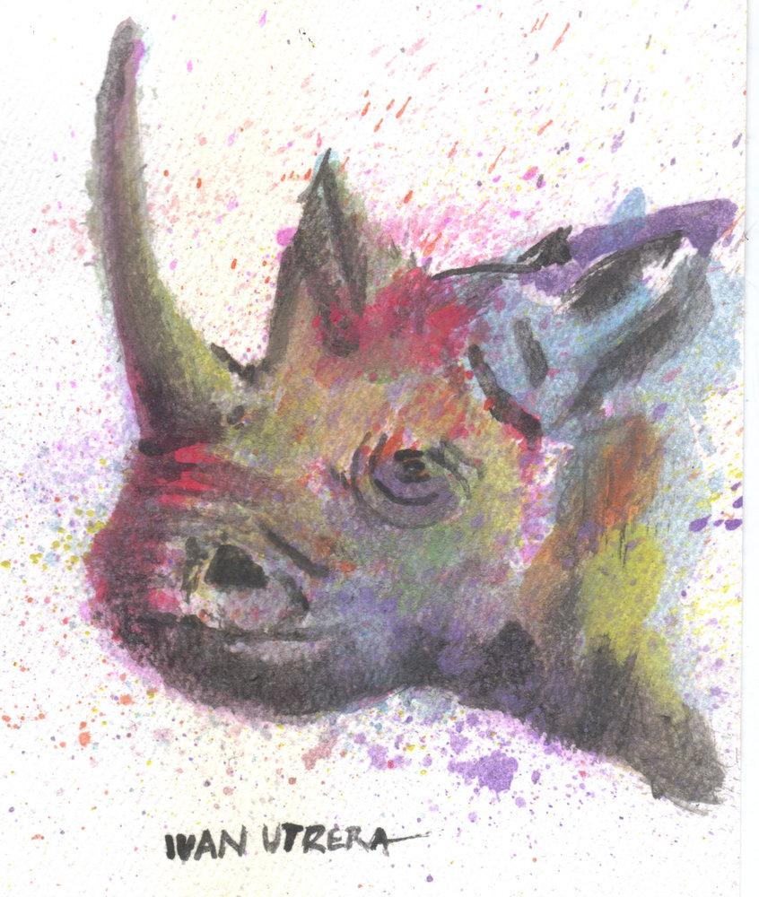 rinoceronte01_363274.jpg
