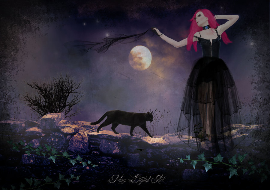 La_noche_de_luna_llena_365300.jpg
