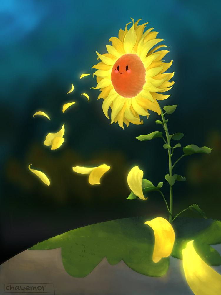 sunflower_377892.jpg
