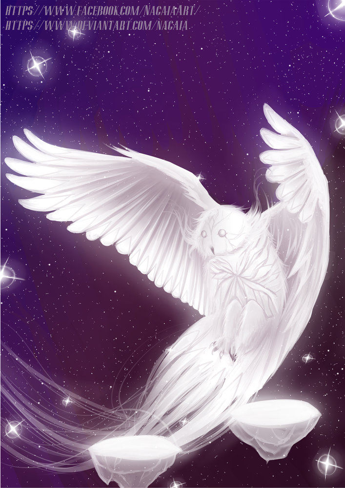Galactic_Owl_JPG_378442.jpg