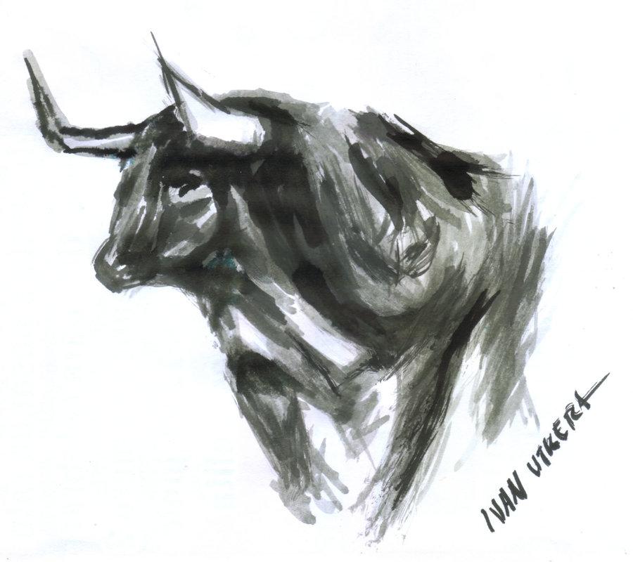bull03_347971.jpg