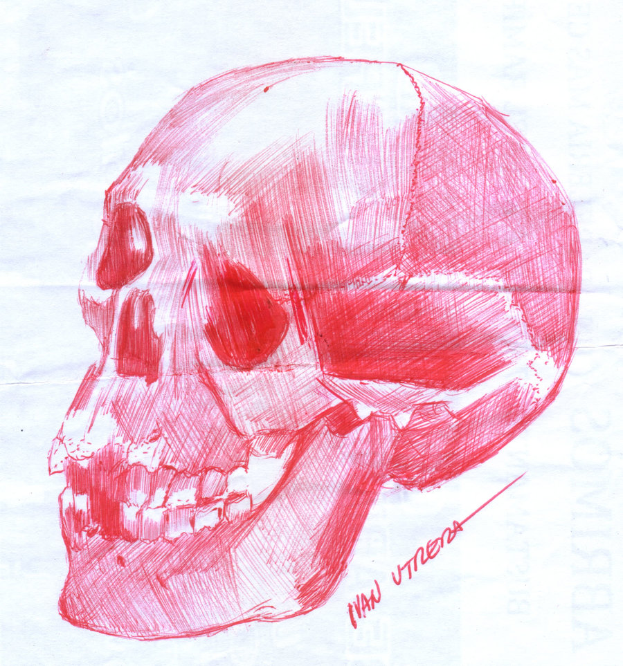skull02_347973.jpg