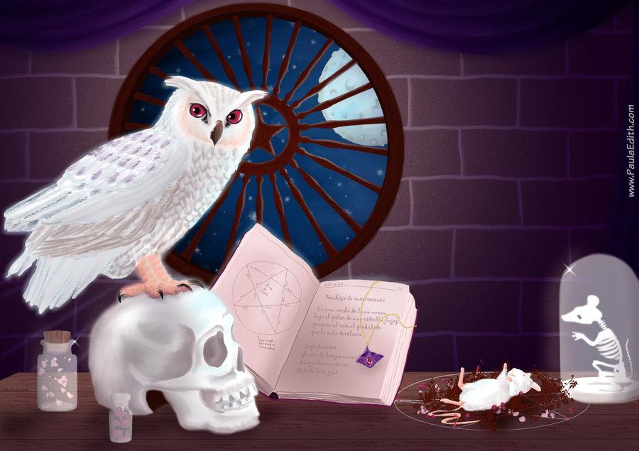 WitchCraft_1200px_350265.jpg