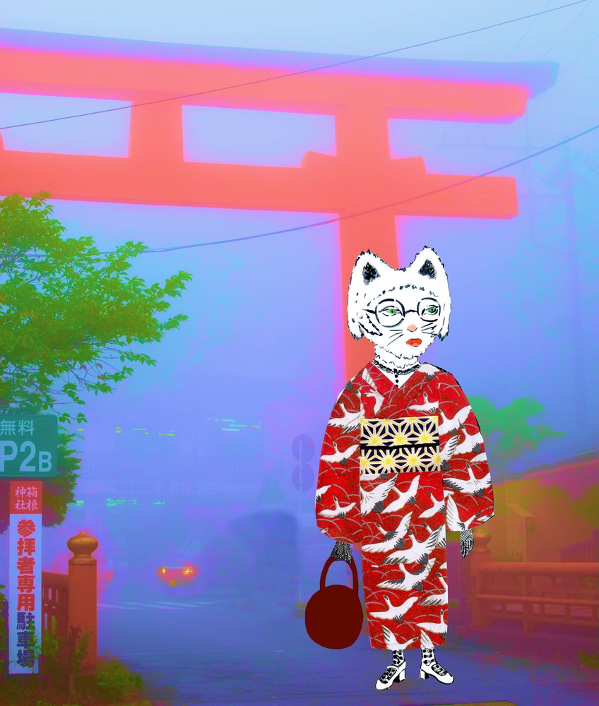 Kimono_Cat_350355.jpg