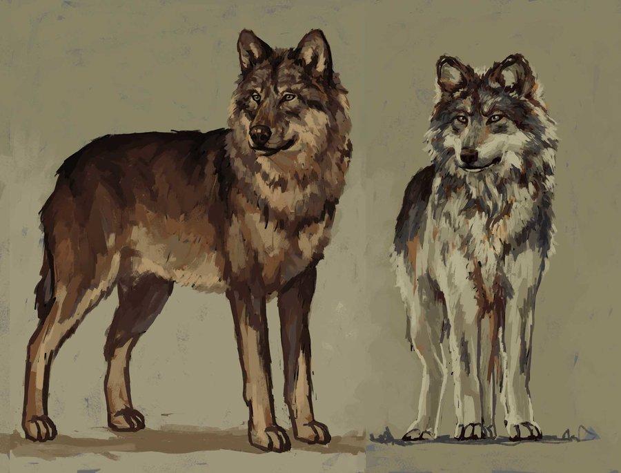 Werewolves_full_form_Male_and_Female_343639.jpg