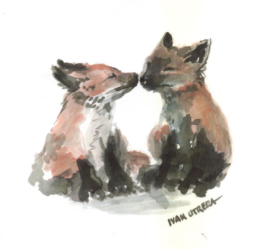 fox02_394005.jpg