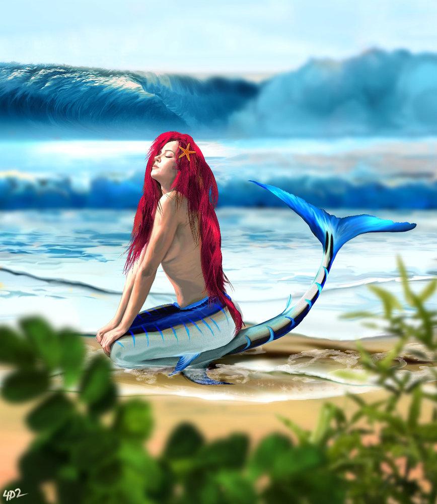 sirena_394955.jpg