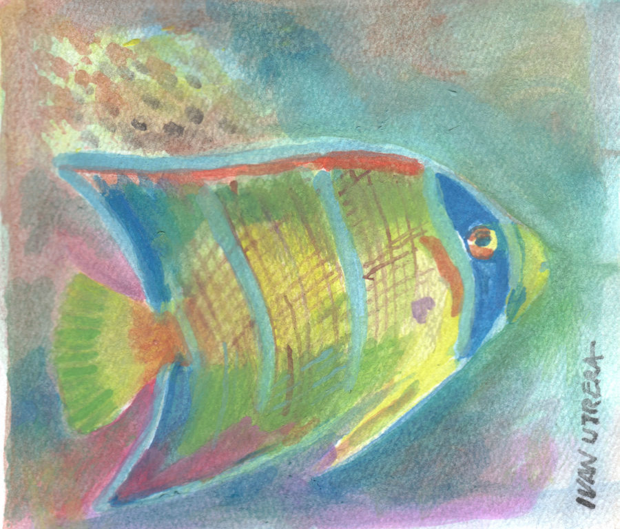 fish05_395270.jpg