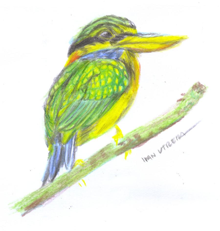 bird_397472.jpg