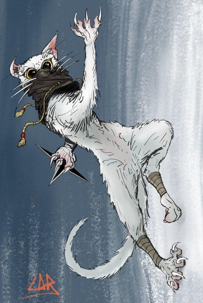 ninja_cat_07_lr_399014.jpg