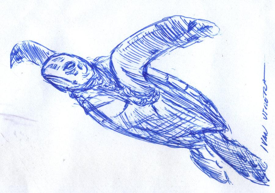 turtle01_400905.jpg