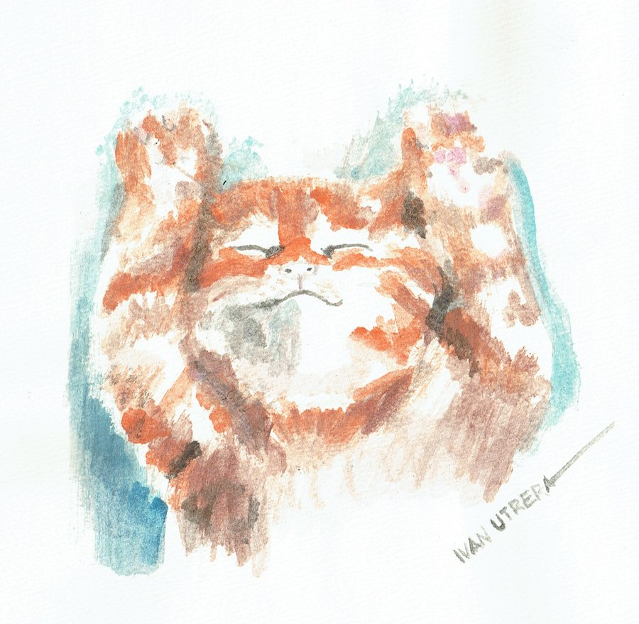 cat10_401156.jpg