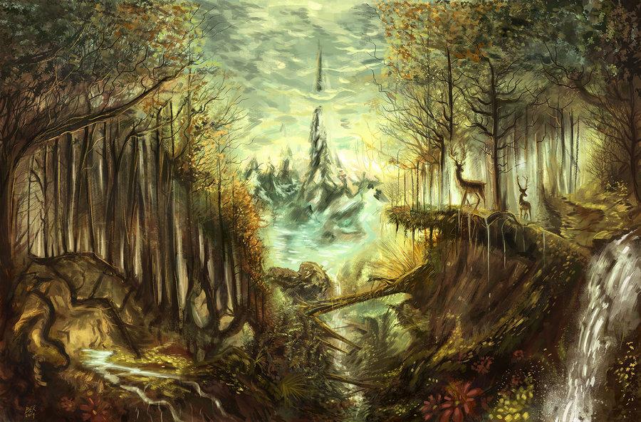 bosque_401258.jpg