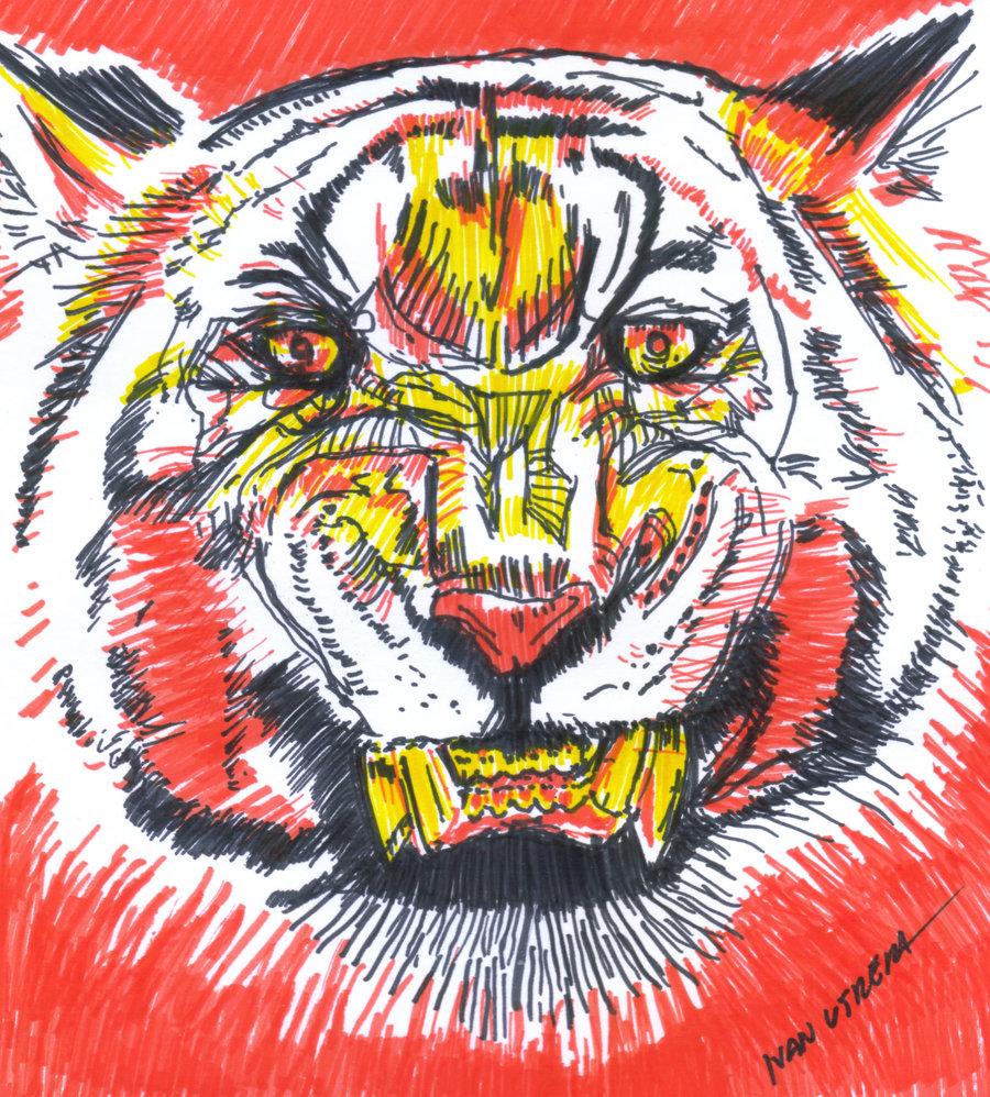 tiger19_403813.jpg