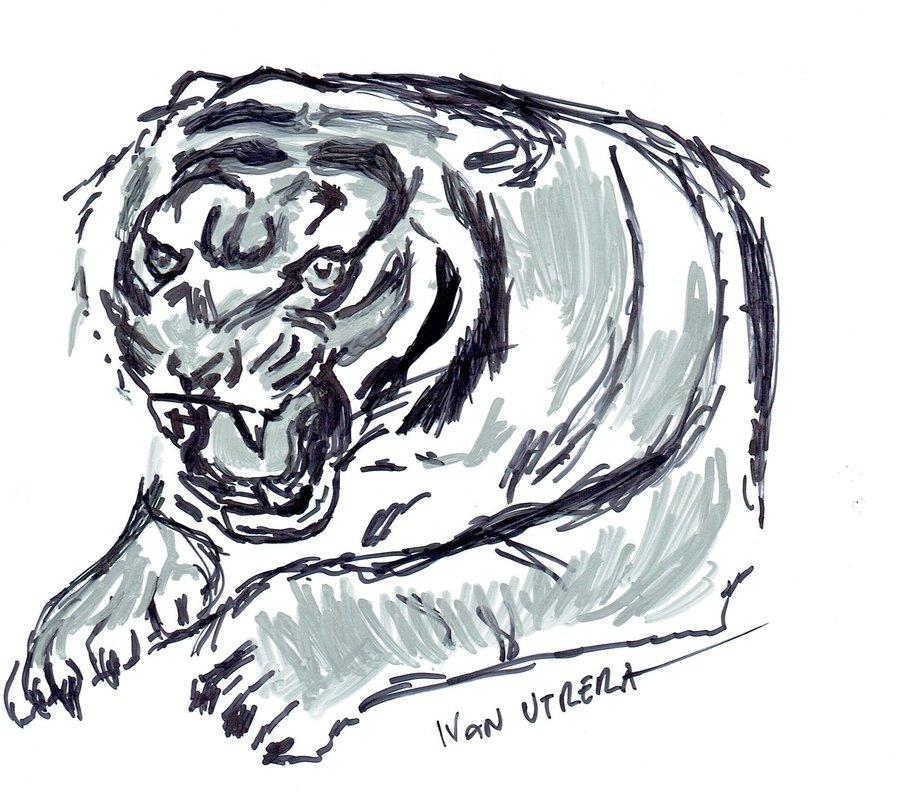 tiger14_405004.jpg