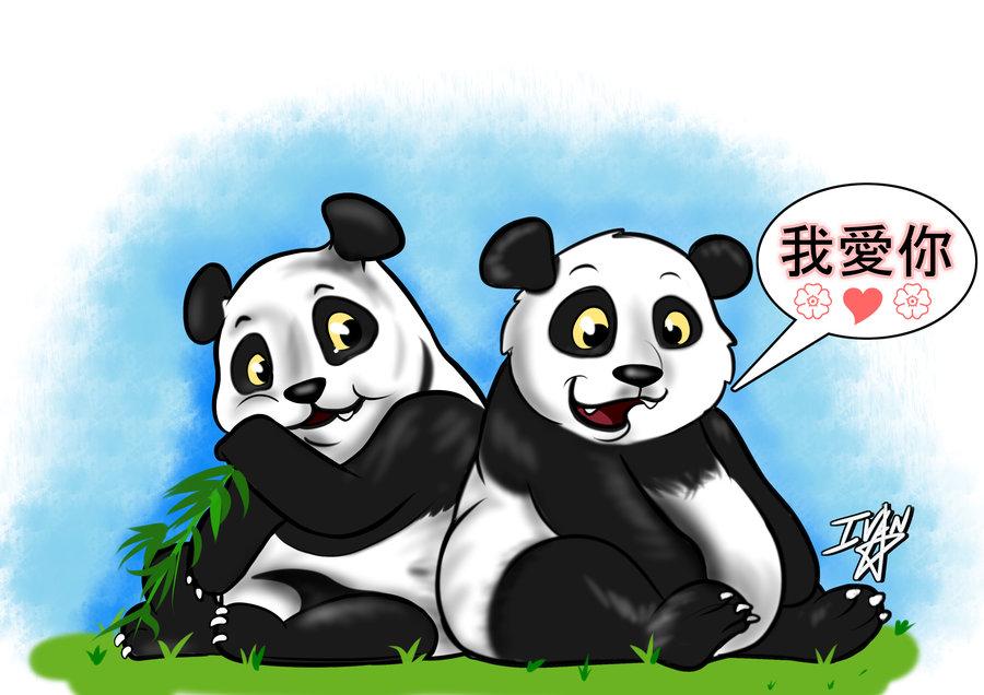 panda_406305.jpg