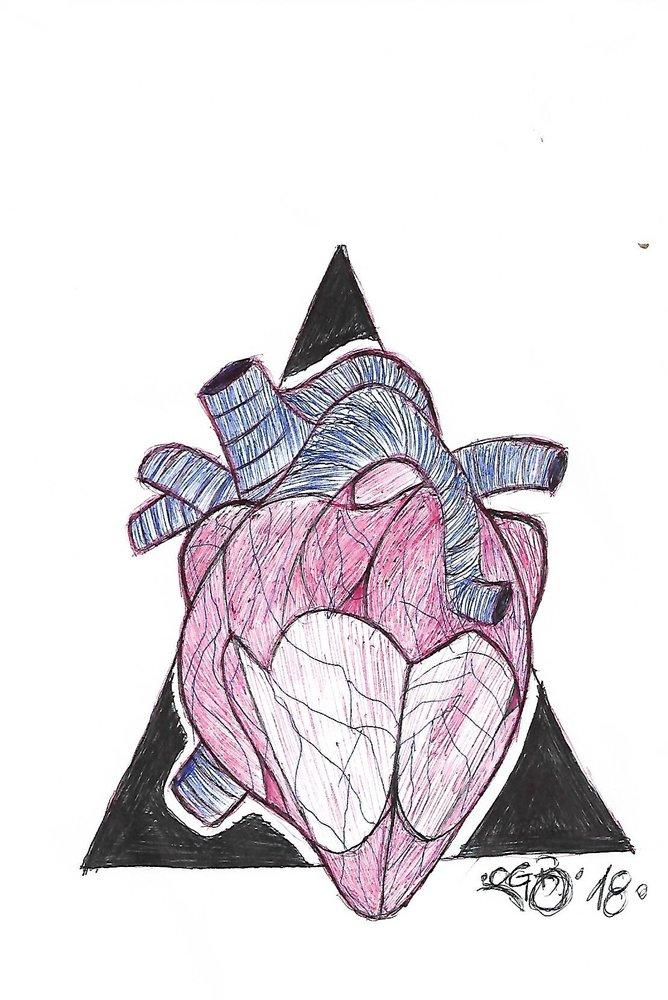OGB_HEART_ANATOMY_408723.jpg