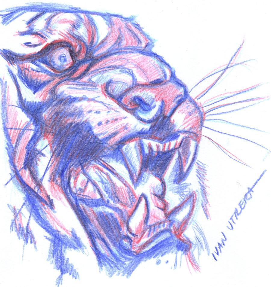 tiger03_411784.jpg