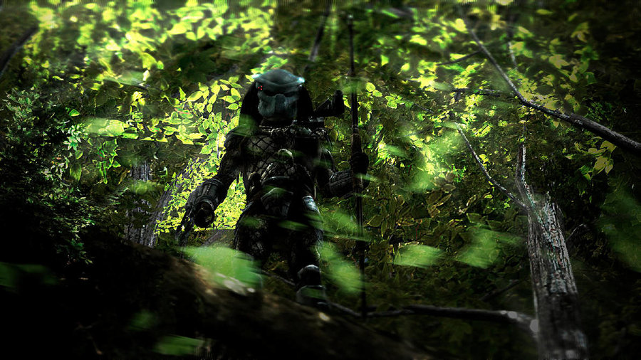 The_Hunt_Begins_388062.jpg