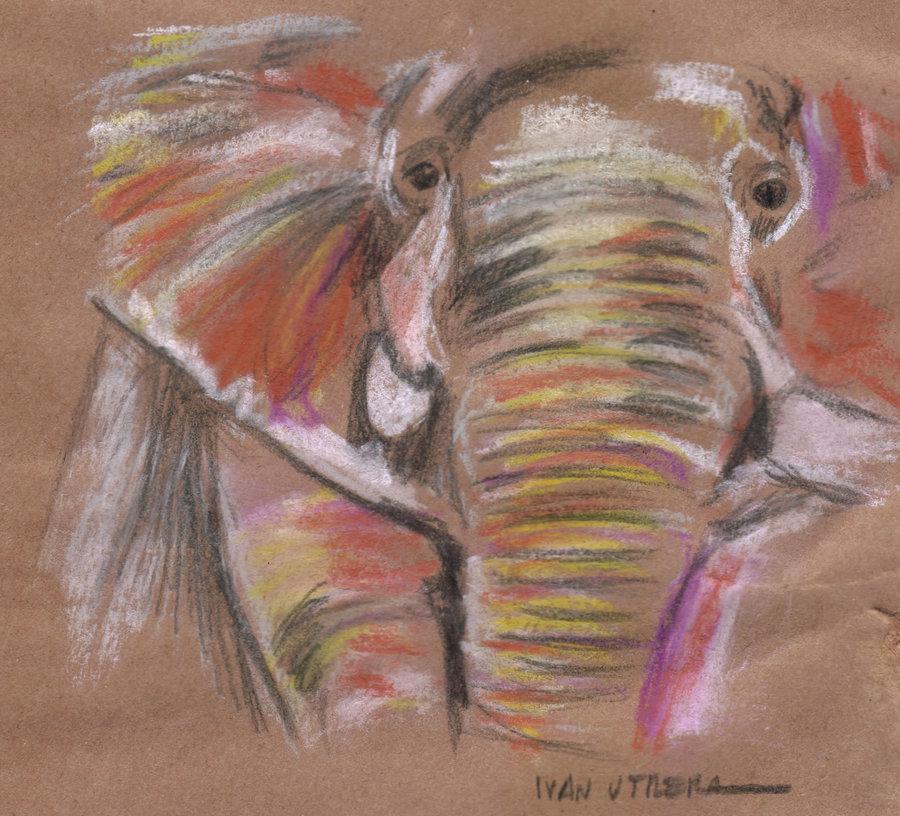 elephant_391449.jpg