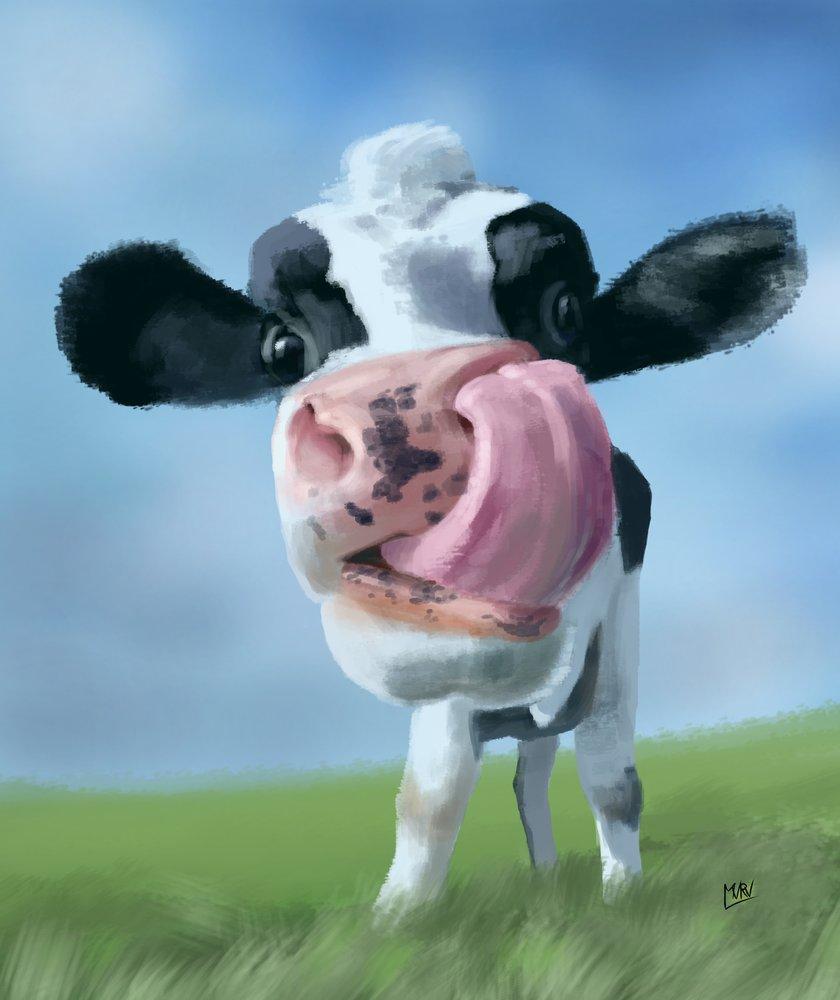 Cow_446179.jpg