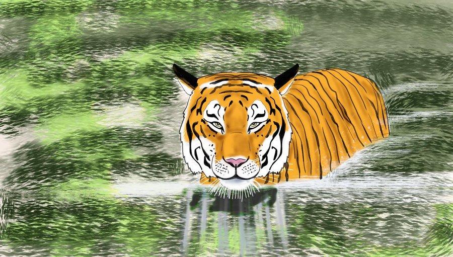 tigre1_426879.jpg