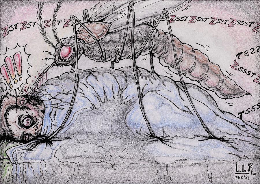 Mosquito_457651.jpg