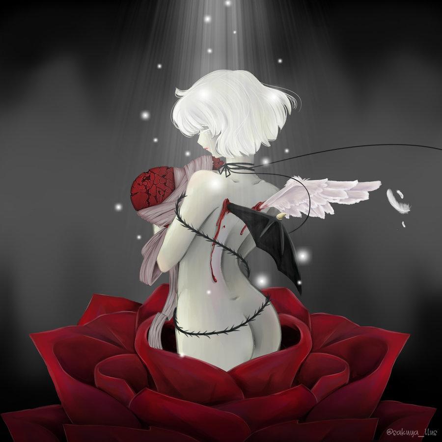 rose_474517.jpg