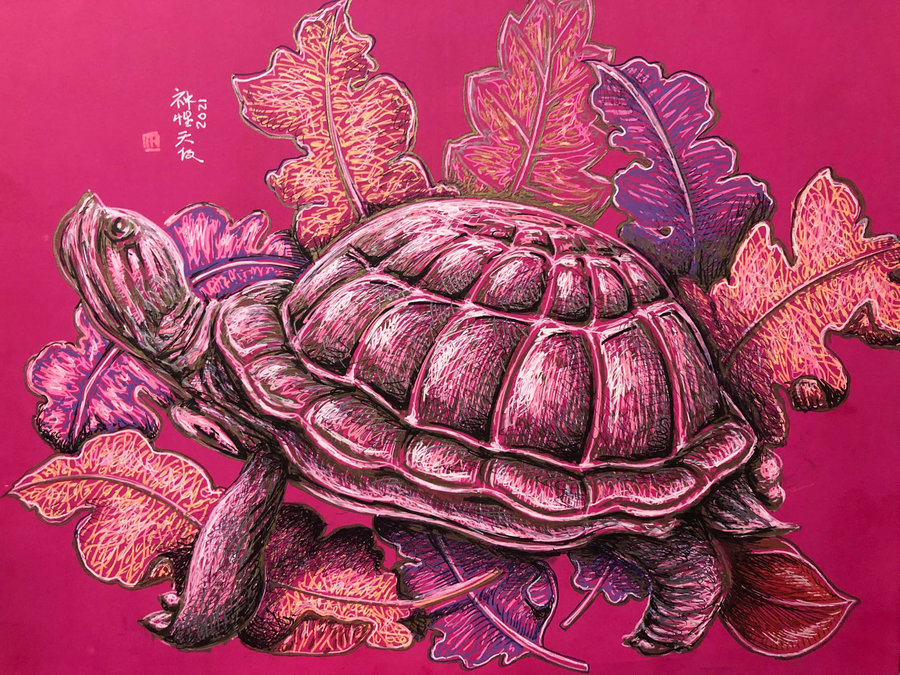 turtle_459196.jpg