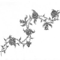 enredadera rosas